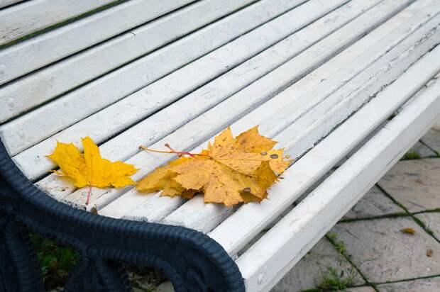 В Удмуртии во вторник усилится ветер