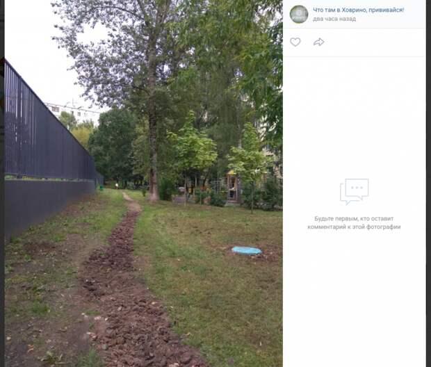 На месте протопа на газоне рядом со школой №597 вырастет трава