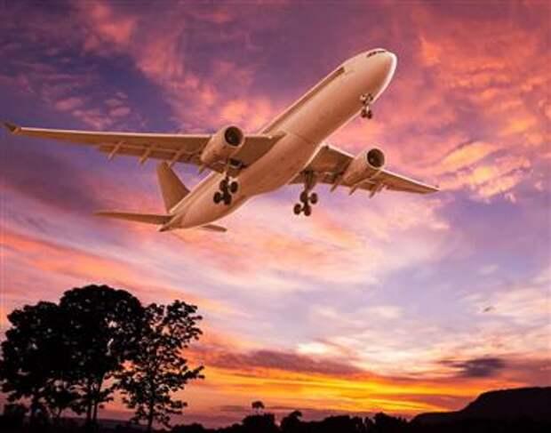 Авиакомпании надеются, что российские власти не будут вводить повторный локдаун