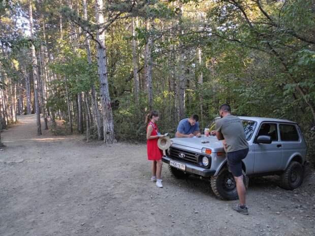 В лесу в районе Ай-Петри начали подсчитывать туристов