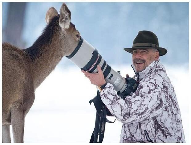 Подборка классных фото и забавных картинок из сети