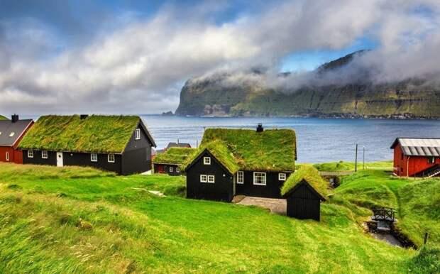 Самая экологичная кровля: мох и газоны на крышах домов газон, дом, крыша, мир, мох, экология, эстетика