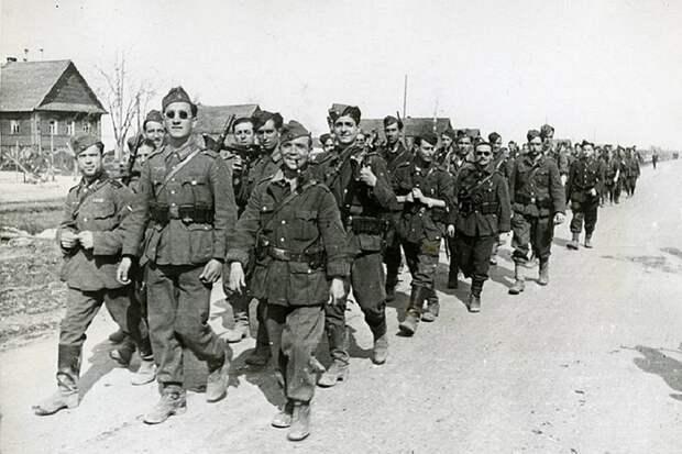 Текст посвящён «Голубой дивизии» — примерно 40 тысячам испанских добровольцев, которые в 1941 году примкнули к вермахту и участвовали в блокаде Ленинграда