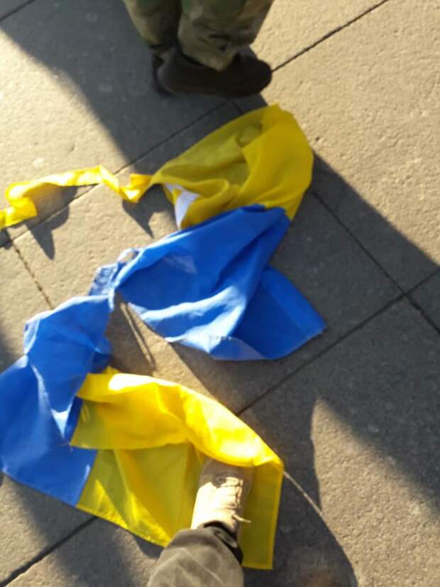 Добровольцы Донбасса разогнали бандеровцев в Петербурге (ФОТО)