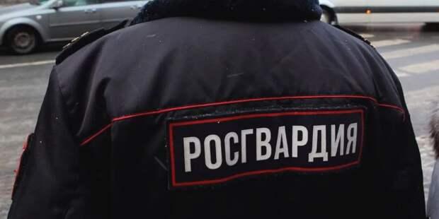 На МВД и Росгвардию хотят наложить защиту