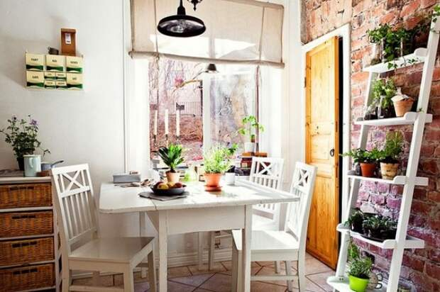 10 симпатичных идей для тех кто мечтает о мини-огороде у себя на кухне