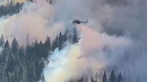 Дым от пожаров уже дошел до атлантического побережья США