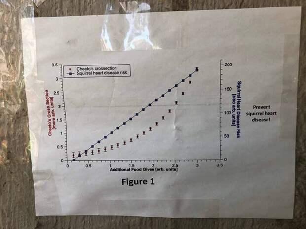 График 1: корреляция между количеством дополнительной еды для Чито и уровнем заболеваний сердца среди белок животные, забавно, кот, лишний вес, смешная история, студенты, физики, юмор