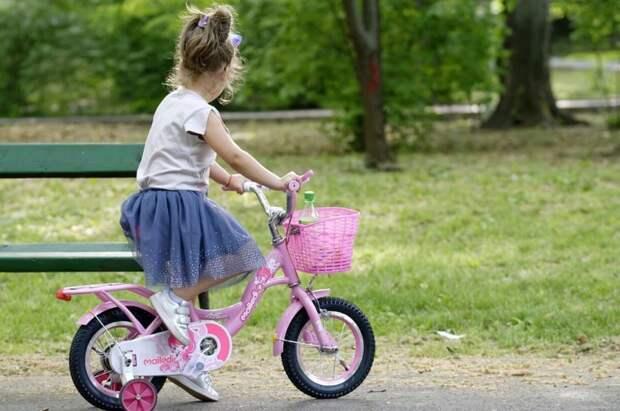 В Петербурге утвердили план мероприятий по воспитанию подрастающего поколения