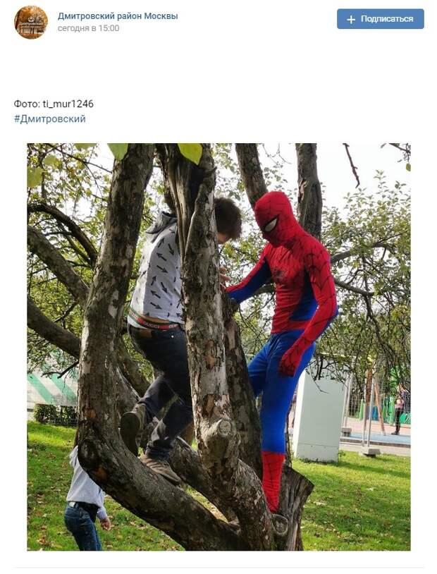 Фото дня: Человека-паука заметили на Ангарских