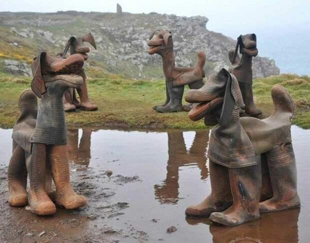 Собаки из сапог