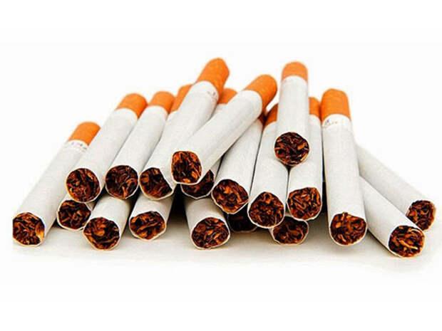 Из-за дороговизны сигарет россияне переходят на махорку