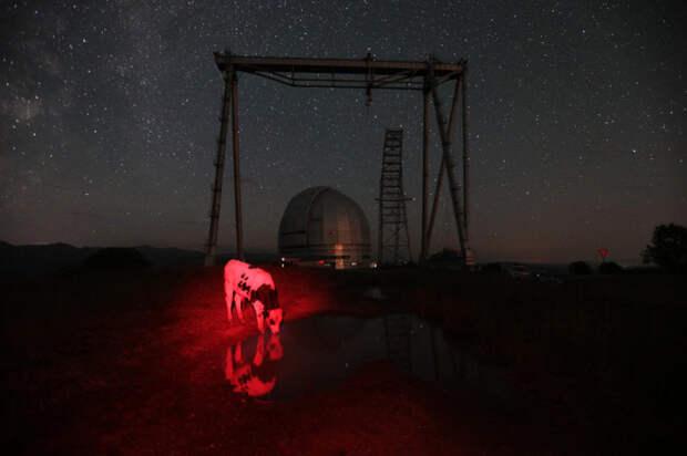 Специальная астрофизическая обсерватория – крупнейший научно-исследовательский институт Российской академии наук. Автор фотографии: Мария Плотникова.