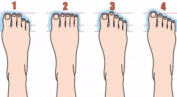 10 типов ноги иваш склад личности