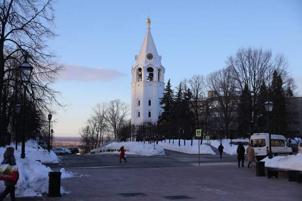Старые ели на территории Нижегородского кремля заменят на новые деревья и кустарники