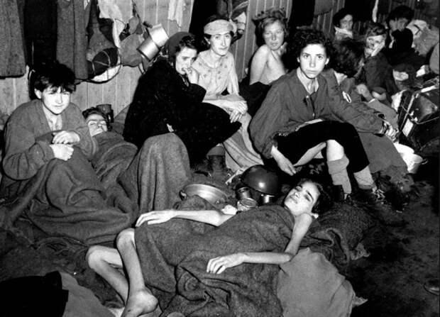 6 фактов о борделях для заключенных концлагерей