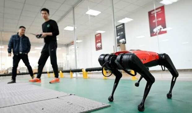 Представлен робот-собака для замены питомцев