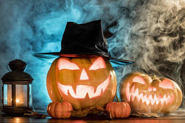 Эксперты дали советы по выбору тыквы на Хэллоуин