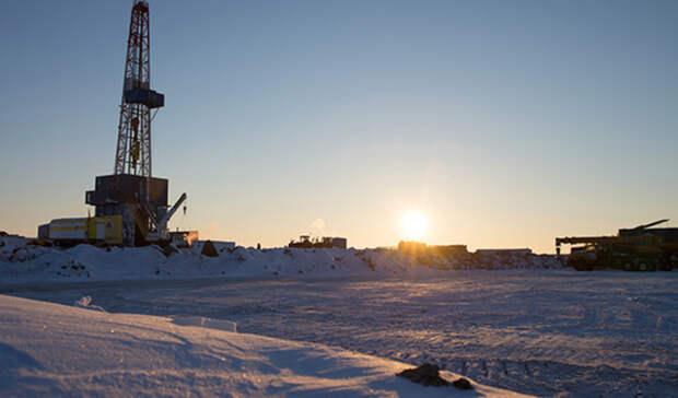 3,6 тысяч нарушений выявил Ростехнадзор поитогам проверок компаний вАрктике