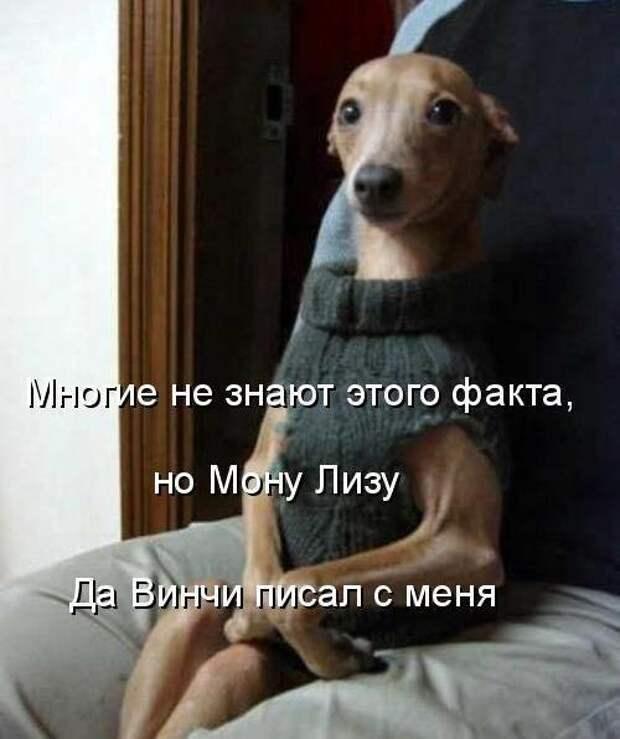 Мона Лизу?)
