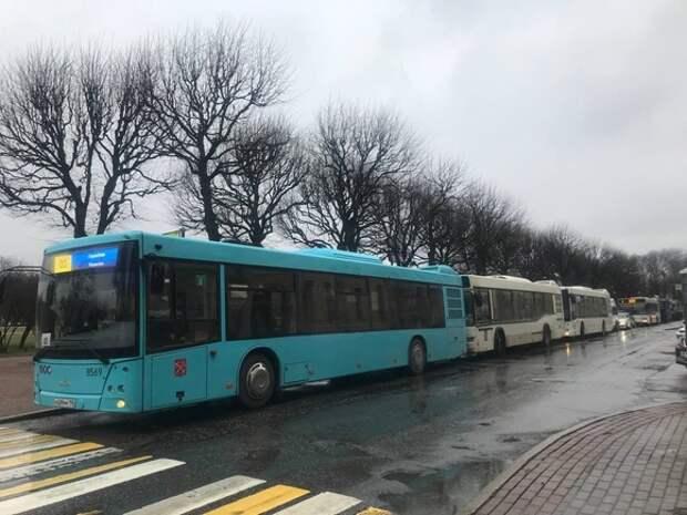 К Марсову полю стянули автозаки Росгвардии и пустые автобусы