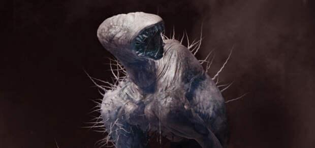 Две истории от матроса из Севастополя о встречах со странными существами