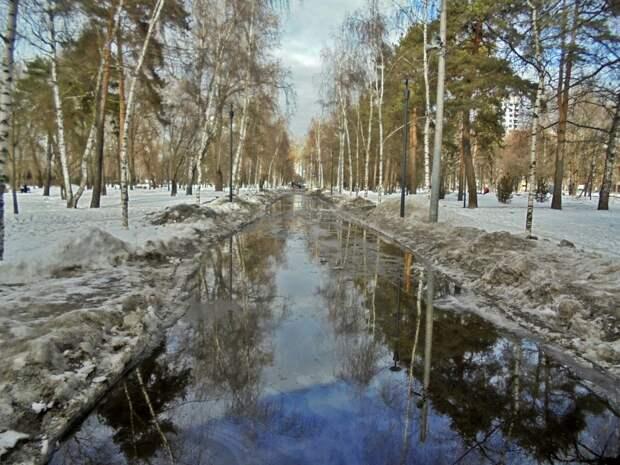 Фото дня: в парке «Торфянка» полились ручьи