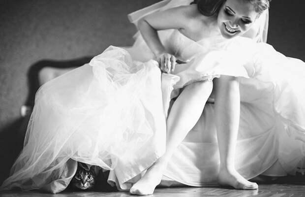Блог Павла Аксенова. Анекдоты от Пафнутия. Фото ivash - Depositphotos