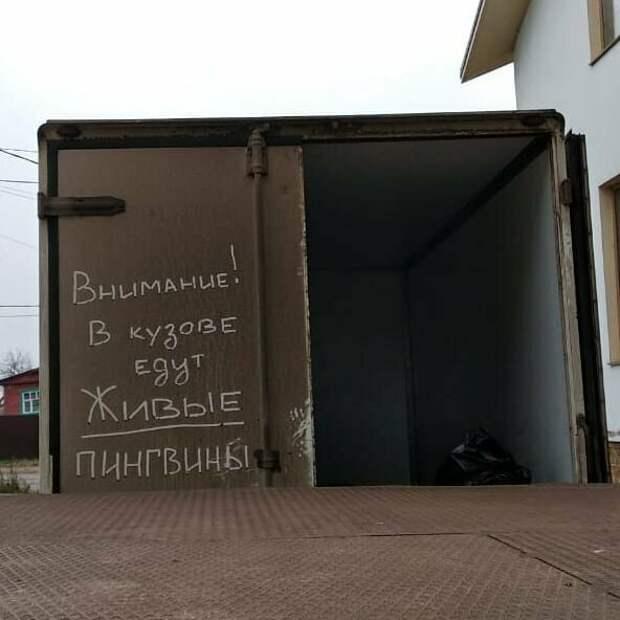 Чего только не пишут в России на авто