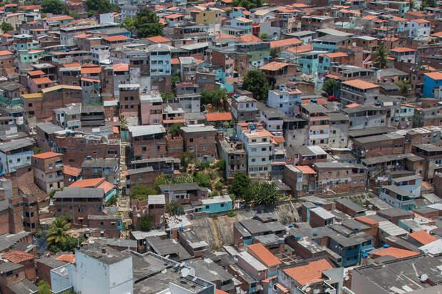 Названы главные особенности жизни в трущобах