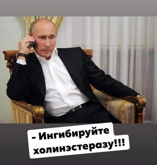 Лучшее в истории с Навальным