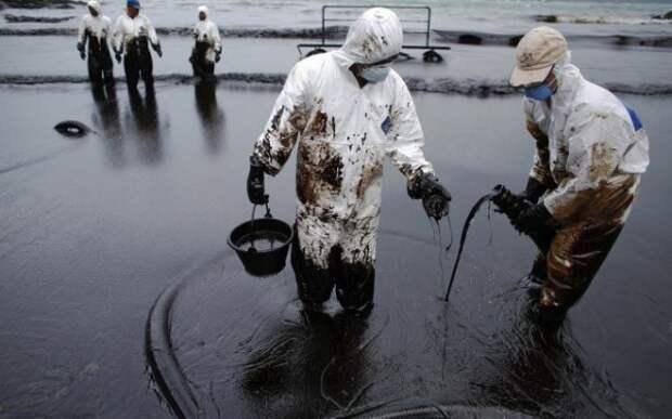 В правоохранительные органы Севастополя попали материалы по факту загрязнения окружающей среды