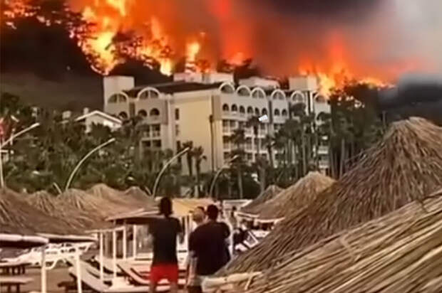 Три отеля эвакуировали в турецком Бодруме из-за лесного пожара