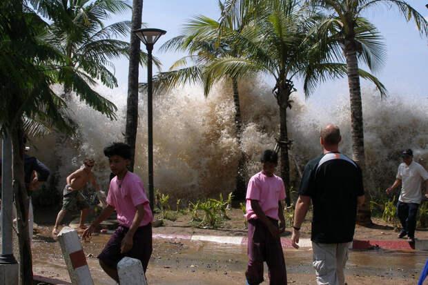 Пропавший без вести во время цунами мужчина нашёлся 16 лет спустя