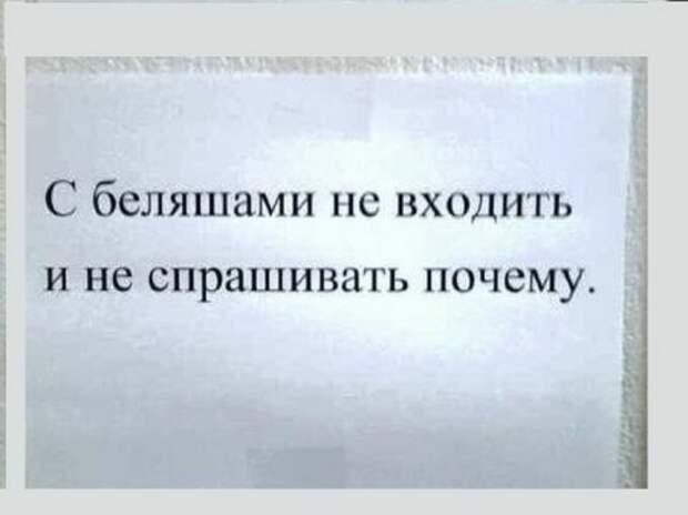 Картинки по запросу фото приколы ржака с надписями