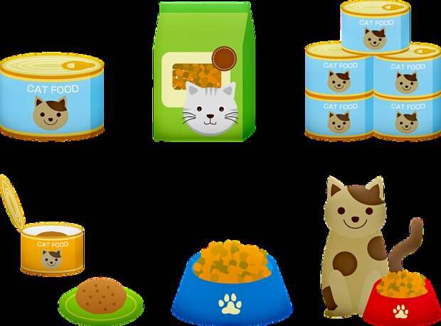Cat Продовольствие, Кошка