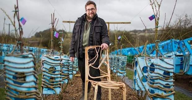 Экологичней некуда: дизайнер из Англии выращивает мебель на грядке
