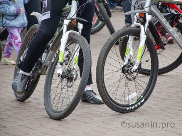 Велопарад пройдёт в Ижевске в День всех влюблённых