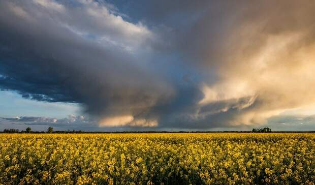 В воскресенье, 25 июля, в Ростовскую область вернется удушающий зной