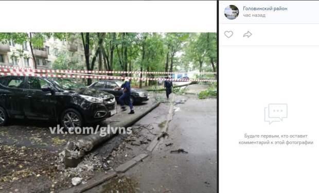 Больше тридцати деревьев пострадало от ветра в Головинском