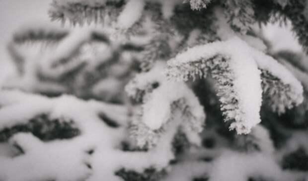 ВНижнем Тагиле ввыходные ожидаются снегопады ипотепление до-11 градусов
