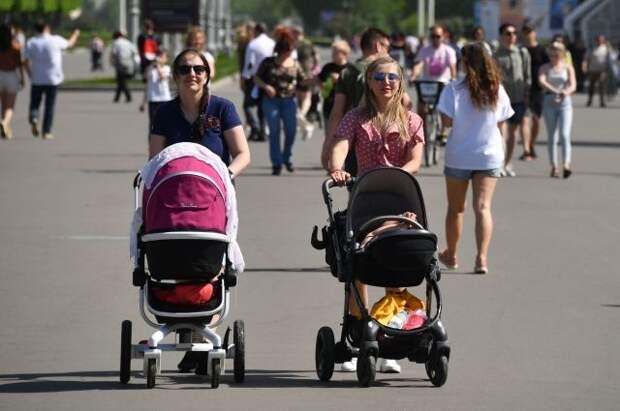 Кабмин выделил 50 млрд рублей на пособия беременным и родителям-одиночкам
