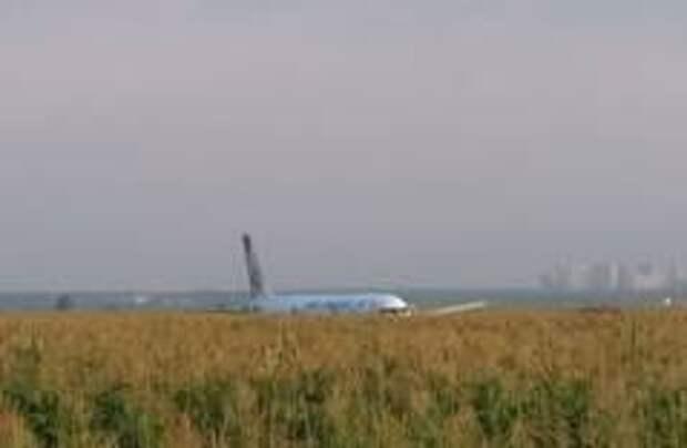 Самолет А-321 совершил аварийную посадку в Подмосковье