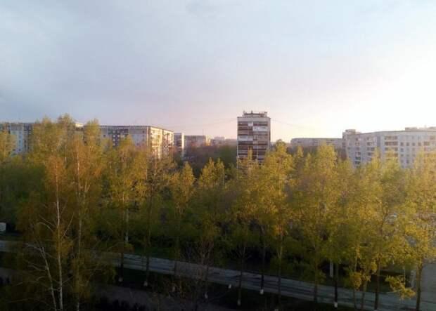 Теплая погода до +14 градусов сохранится в Новосибирской области до конца рабочей недели