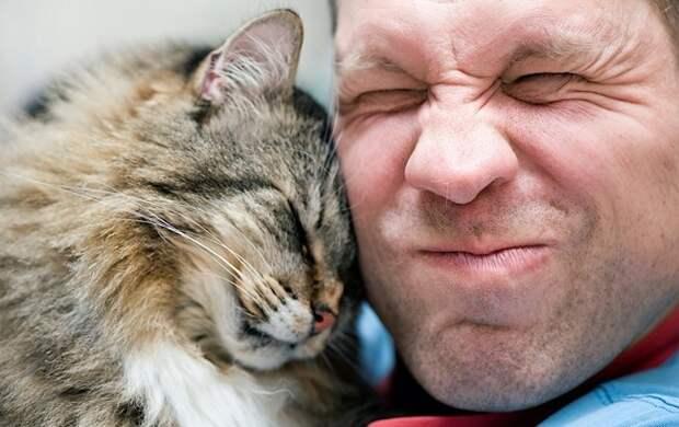 Блог Павла Аксенова. Анекдоты от Пафнутия. Фото DarkBird - Depositphotos