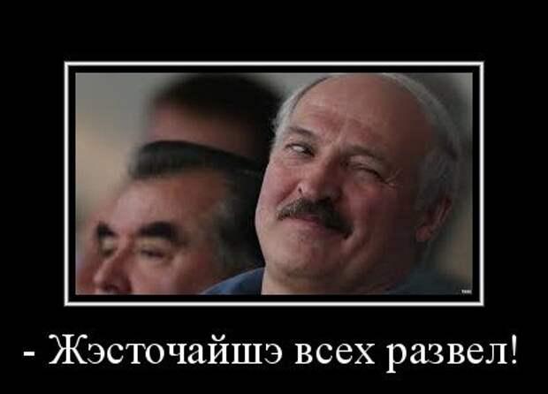 Лукашенко подался в счетоводы