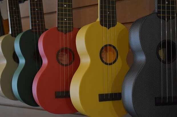 В Северном проведут мастер-класс по гавайской гитаре