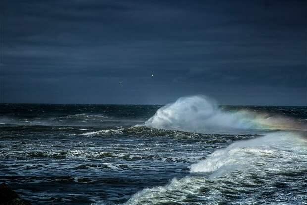 ФОТОВЫСТАВКА. Dalton Portella: океан во время шторма