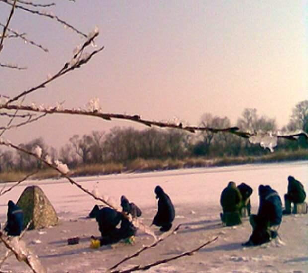 Насадки для зимней рыбалки