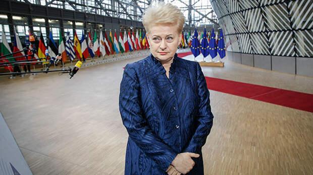Президент Литвы заявила о готовности к «вторжению» России